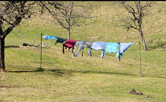 laundry-291168__340